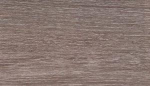 Дуб серый Калуга