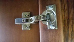 Петля для распашной двери с доводчиком Калуга